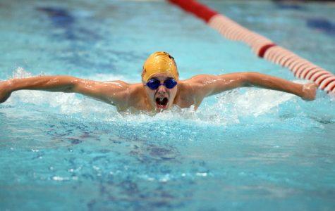 Swimming slideshow