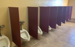 Urinal dividers installed for second semester